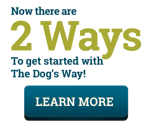 There Are Two Ways to Start with The Dog's Way Training Course! Get started training your dog today! https://www.thedogsway.com/dogs-over-7-months