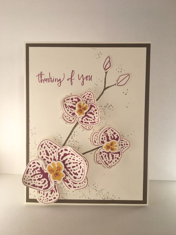 orchidee grimpante stampin up