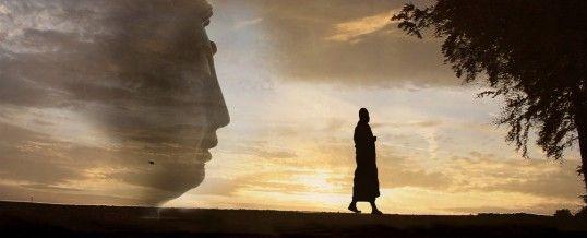 As 10 Melhores Histórias Zen de Sempre