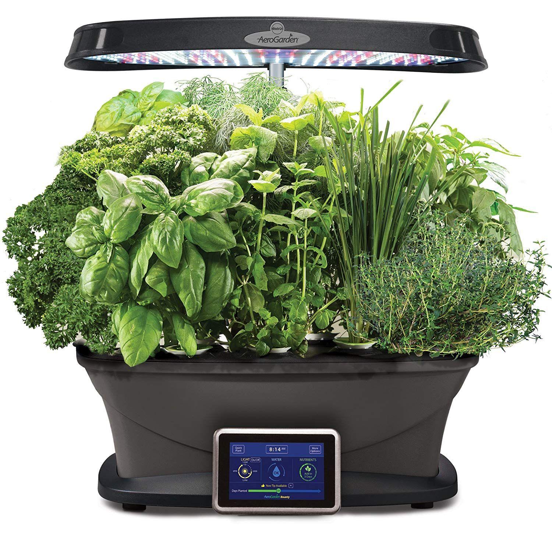 Review Gourmet Herbs Herb Garden Kit Herb Seeds 400 x 300