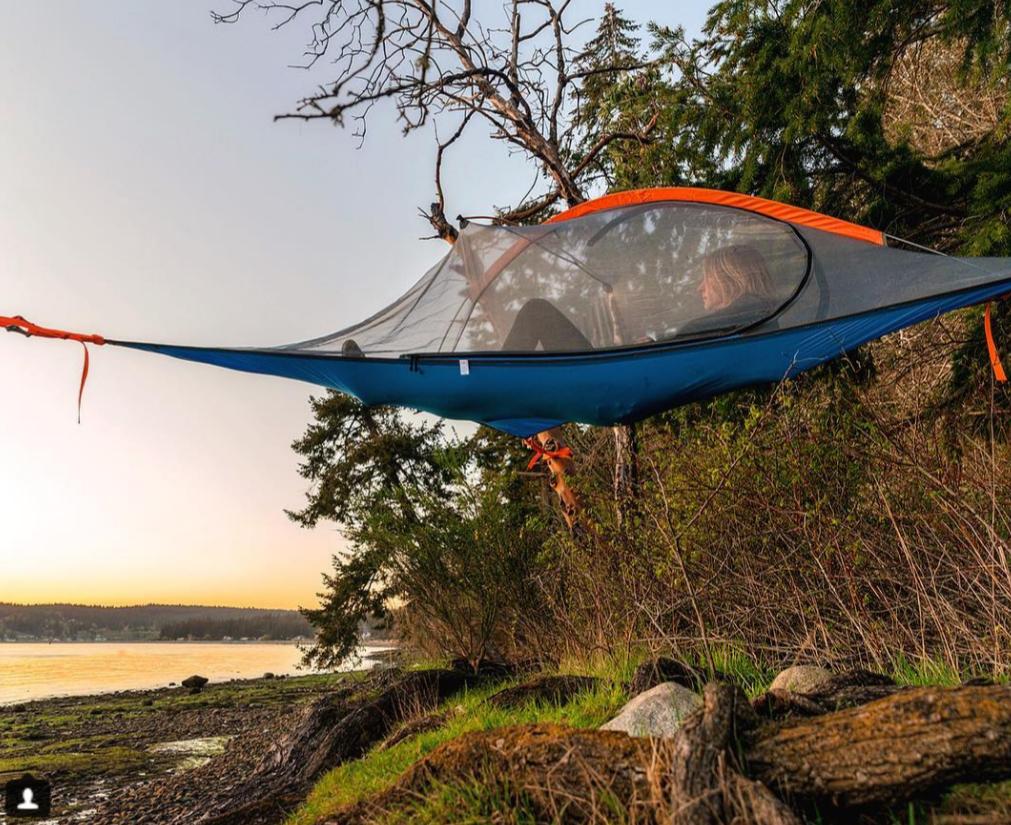 Flite+ Tree Tent Tentsile LTD $350.00 Preferably in Blue fly & Flite+ Tree Tent | Tree tent Tents and Camping