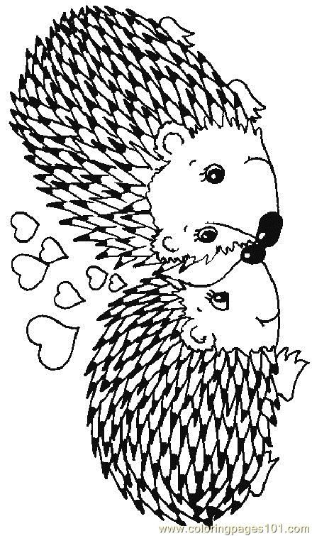 Coloring Pages Hedgehog 17 Mammals Hedgehogs Free