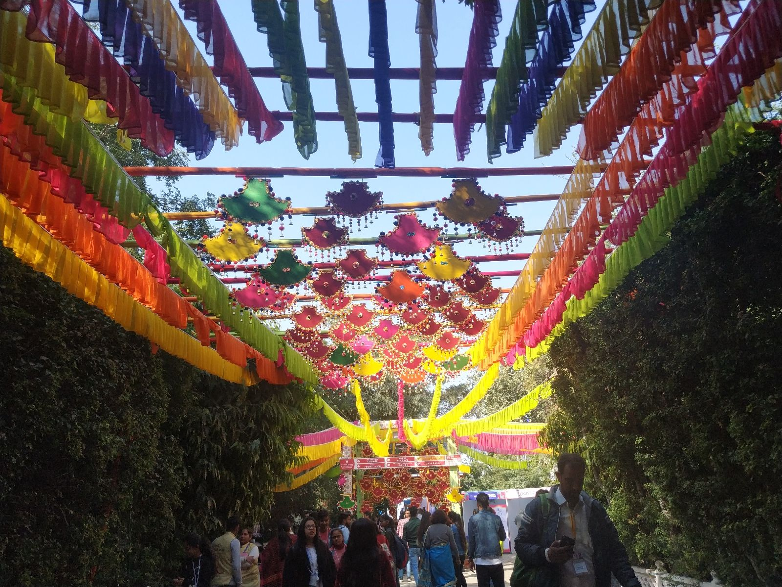 7 Beautiful Pictures Of Jaipur Rajasthan In 2020 Jaipur Rajasthan Things To Do