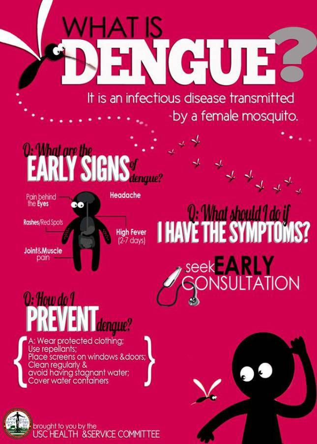 Dengue Fever Infects La Fte De >> Dengue Hemorrhagic Fever Mosquito Borne Diseases Dengue Fever