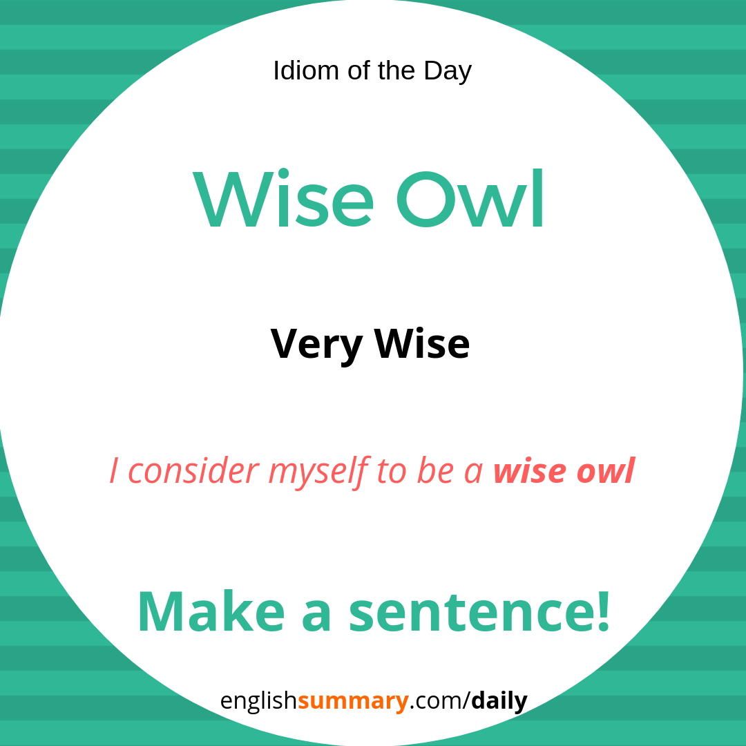 As Wise as Owl Meaning and Use #idiomoftheday | Idioms