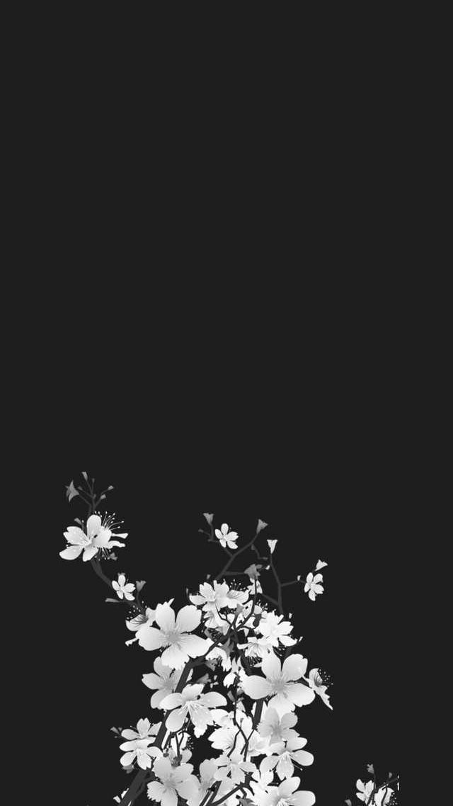 Image Jpg 640 1138 Black Flowers Wallpaper Aesthetic Iphone Wallpaper Pretty Wallpapers