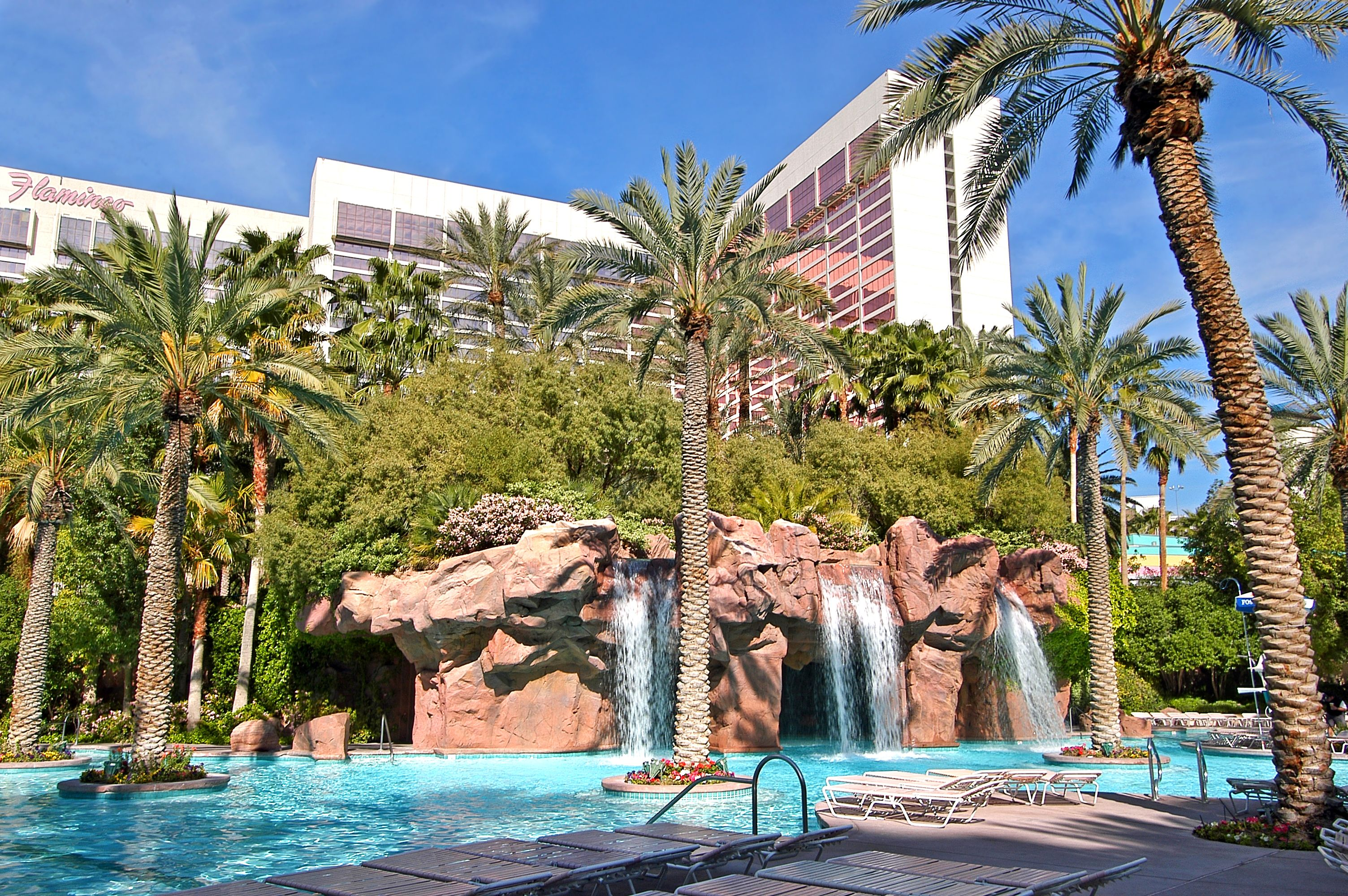 Best Pools In Las Vegas Best Pools In Vegas Las Vegas Hotels Las Vegas Pool