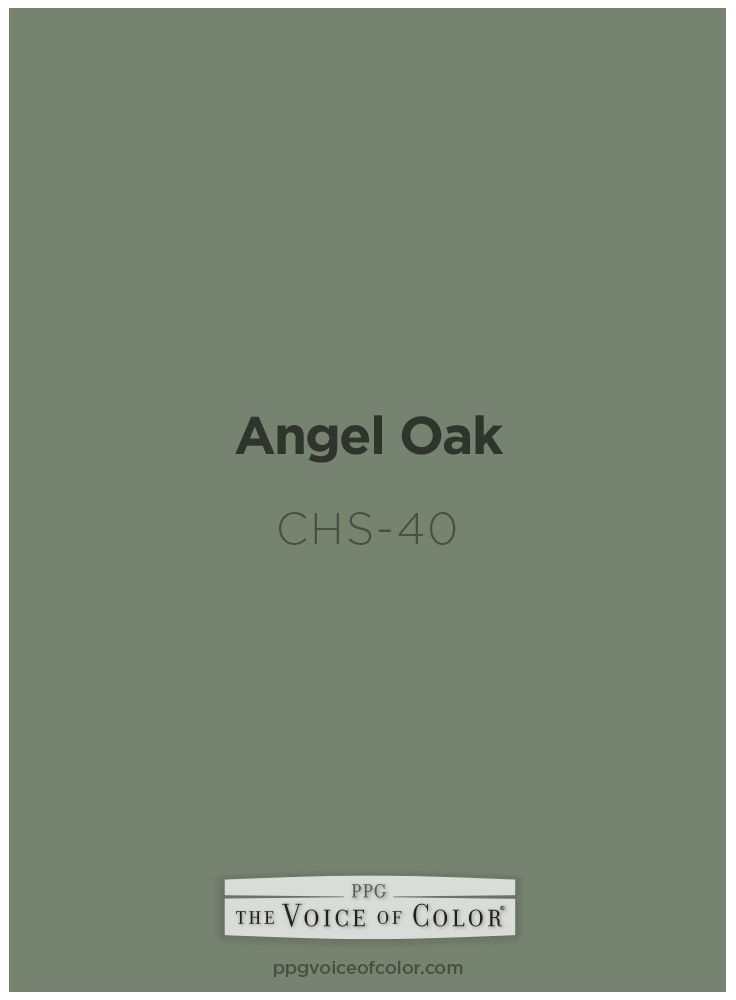 Angel Oak Chs 40 Voice Of Color Ppg Pittsburgh Paints And Ppg
