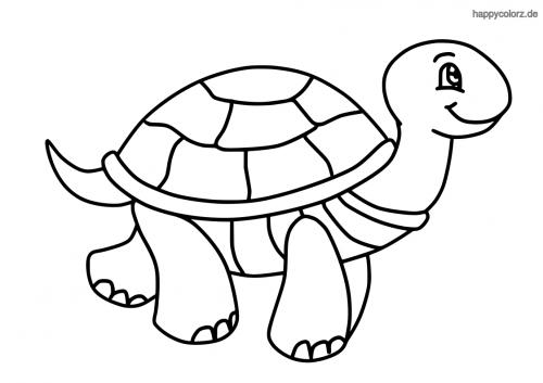 lachende schildkröte ausmalen  ausmalen ausmalbilder