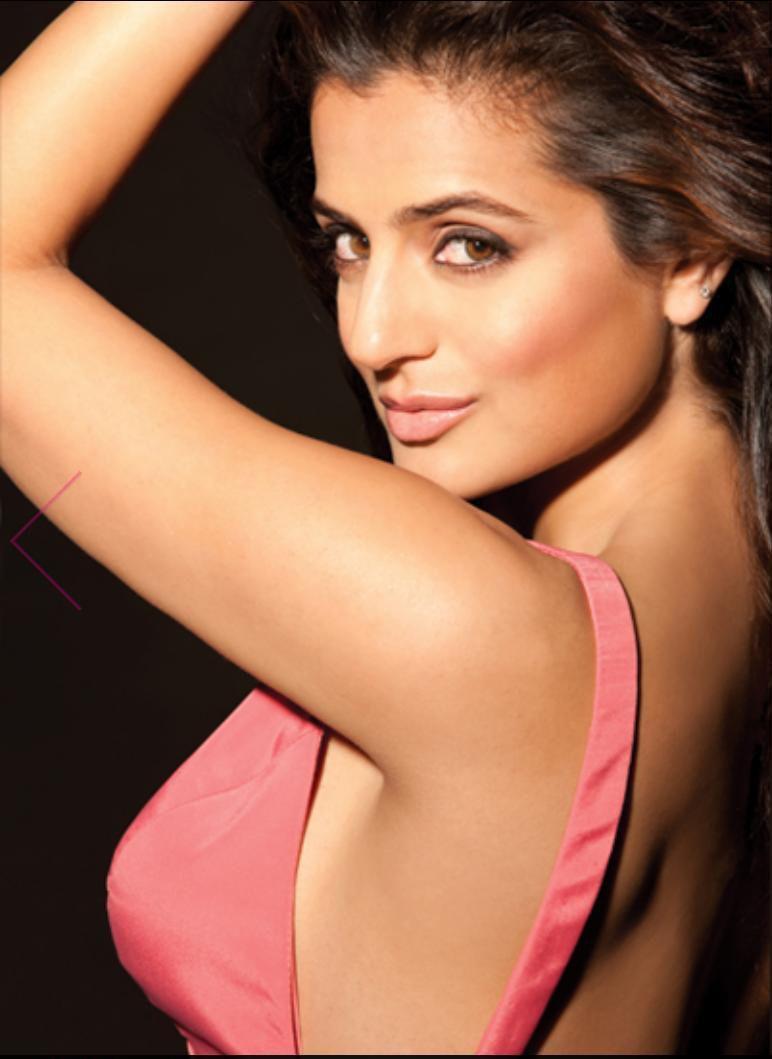 Amisha Patel Hot And Sexy Images