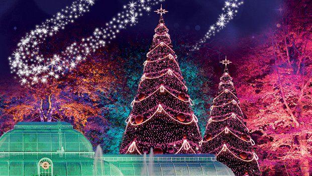 """Kew Gardens on Twitter: """"500, 660 or 770 lights on Kew's 2014 winter trail? Tweet answer+ #ChristmasAtKew to enter https://t.co/fEFmWBEJYl https://t.co/J1qjnYERsd"""""""