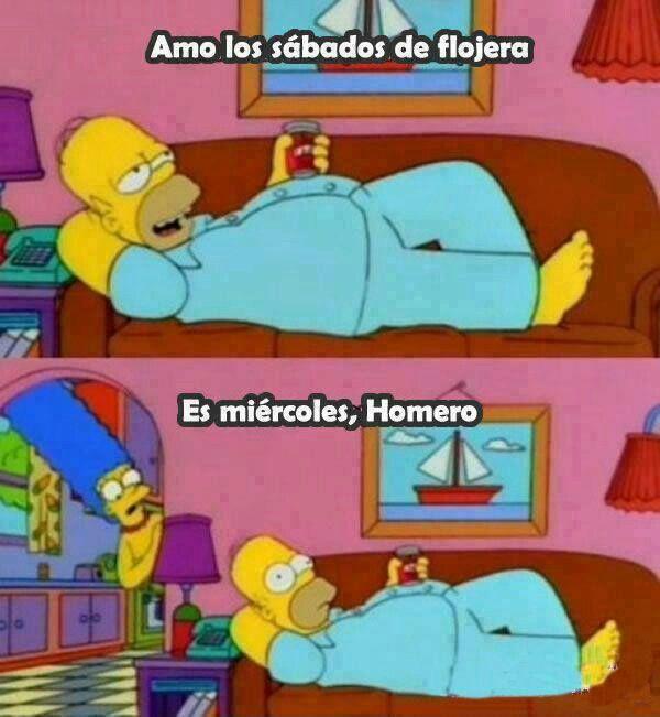 Ombligo De Semana Memes De Los Simpson Memes De Homero Frases De Los Simpsons