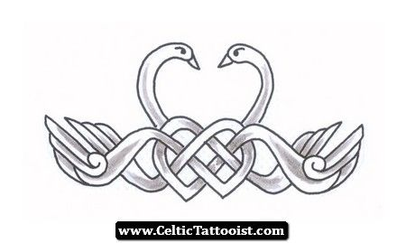 6 Awesome Swan Tattoo Designs And Ideas Swan Tattoo Celtic Designs Celtic Knotwork