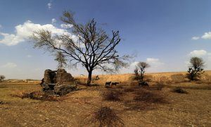 Scorched land on the outskirts of Jaipur, Rajasthan, India