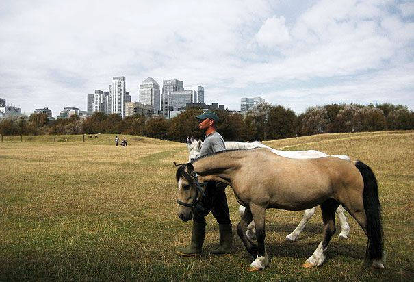 Mudchute City Farm London, with Canary Wharf in the background. The charity has 6 key objectives, to: preserve the natural environment; promote the opportunity of recreation and leisure on farm - especially for the young, elderly and those of limited economic means; advance the education of local people in countryside activities; promote animal welfare; provide education and training for young people; promote conservation of both the natural and built environments http://www.mudchute.org/