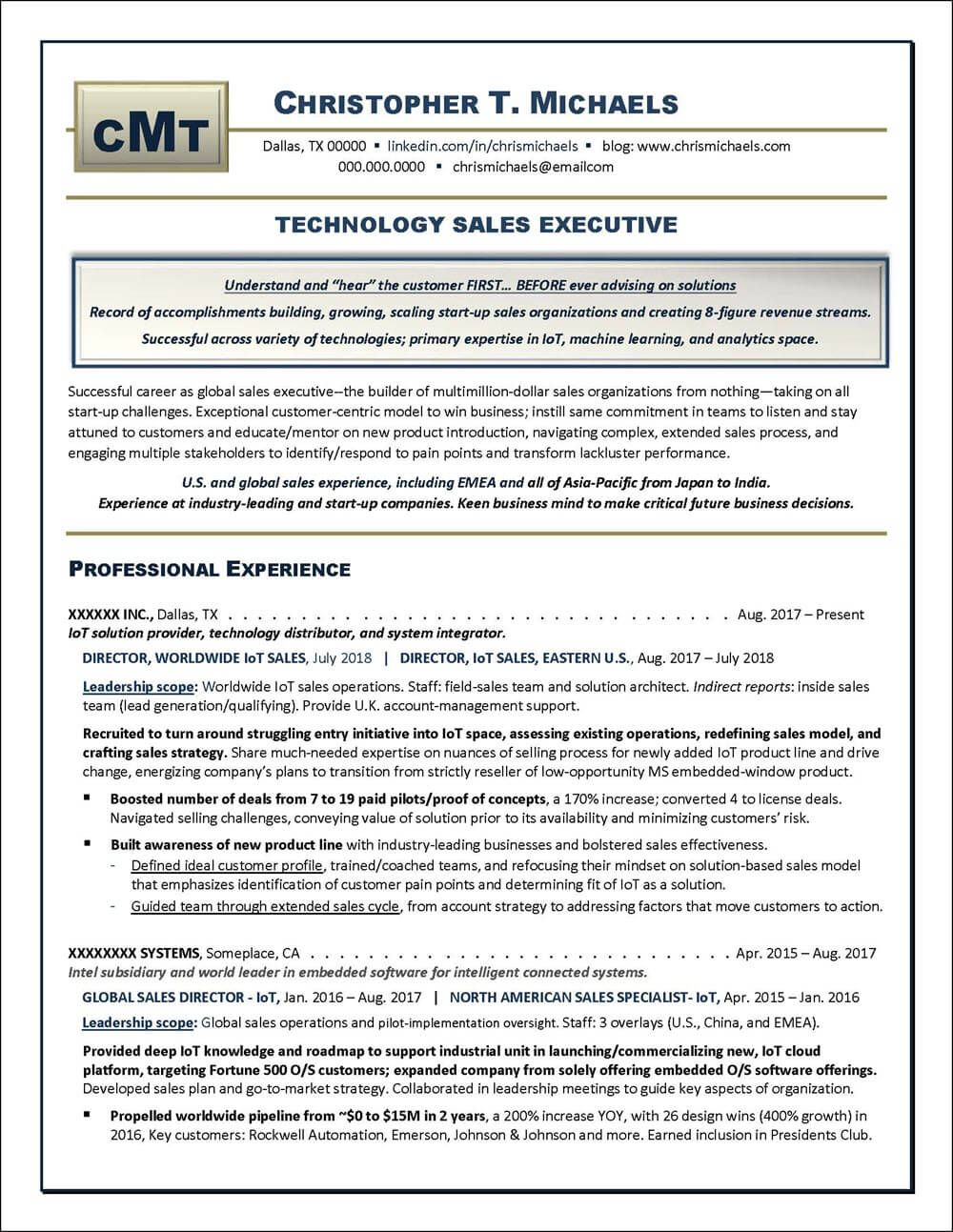 Example of technology sales executive resume with eye