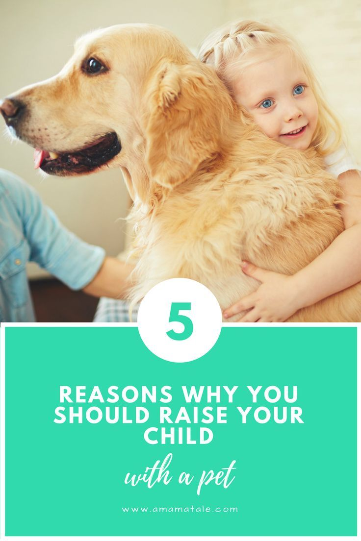 Child and pet: which pet is more useful for the baby