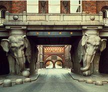 elephant passage