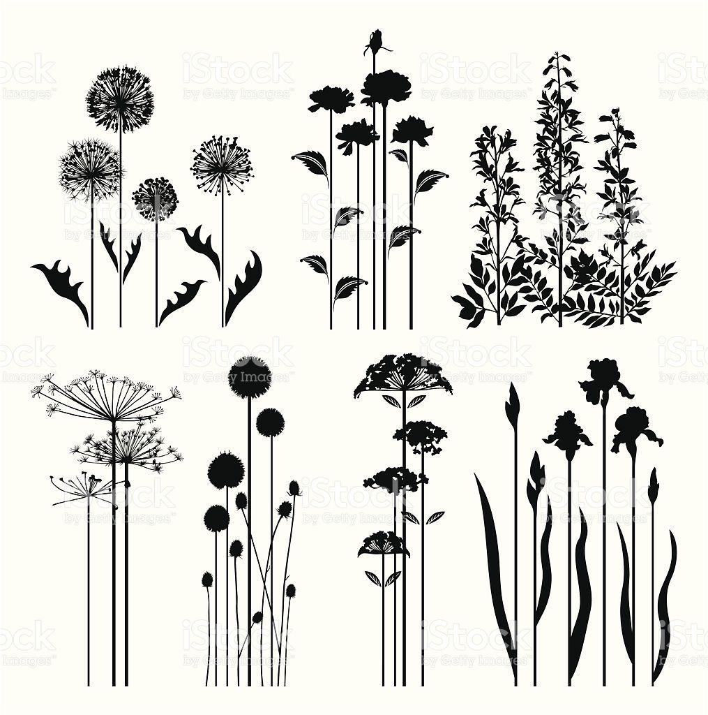 silhouettes of variable spring plants  kunstproduktion