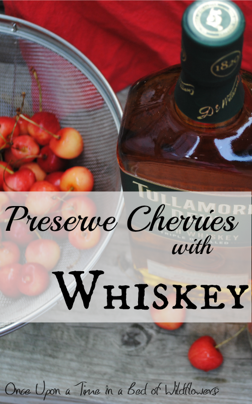 How to Preserve Cherries with Whiskey
