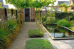 Ontwerp kleine tuin google zoeken tuin pinterest ontwerp zoeken en google - Wijnstokken pergola ...
