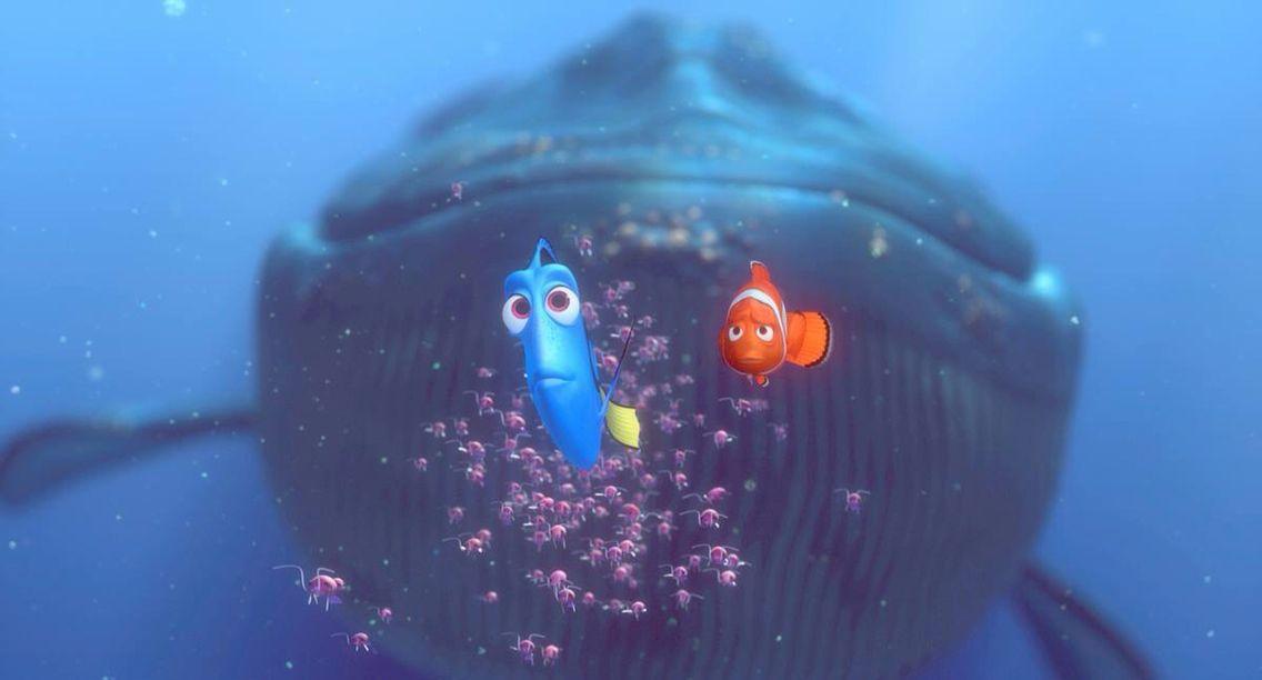 Buscando A Nemo Finding Nemo Nemo Disney Artwork