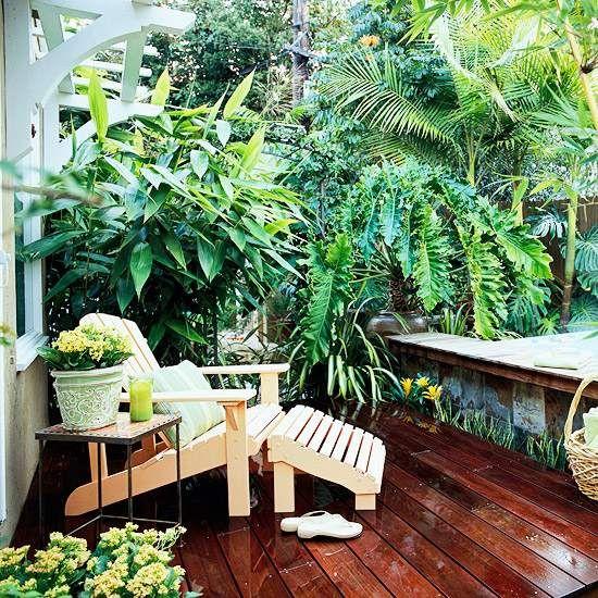 Sichtschutz auf der terrasse tropische pflanzen üppig … | Pinteres…