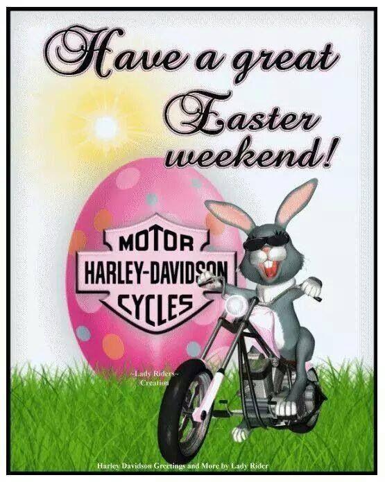 Harley Easter | Harley Davidson | Pinterest | Easter, Harley ...