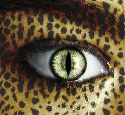 Awesome eye art - schitterende eye art- cat style