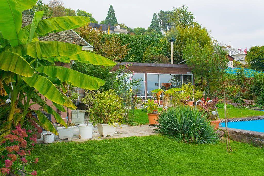 Haus In Meilen Schweiz Poolhaus Studio In Unserem Grunen Garten Mit Wunderschoner Seesicht Geniessen Sie Den Garten Bei Tag Und Di Haus Mieten Poolhaus Haus