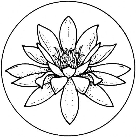 Water Lily Coloring Page To Use As An Embroidery Pattern