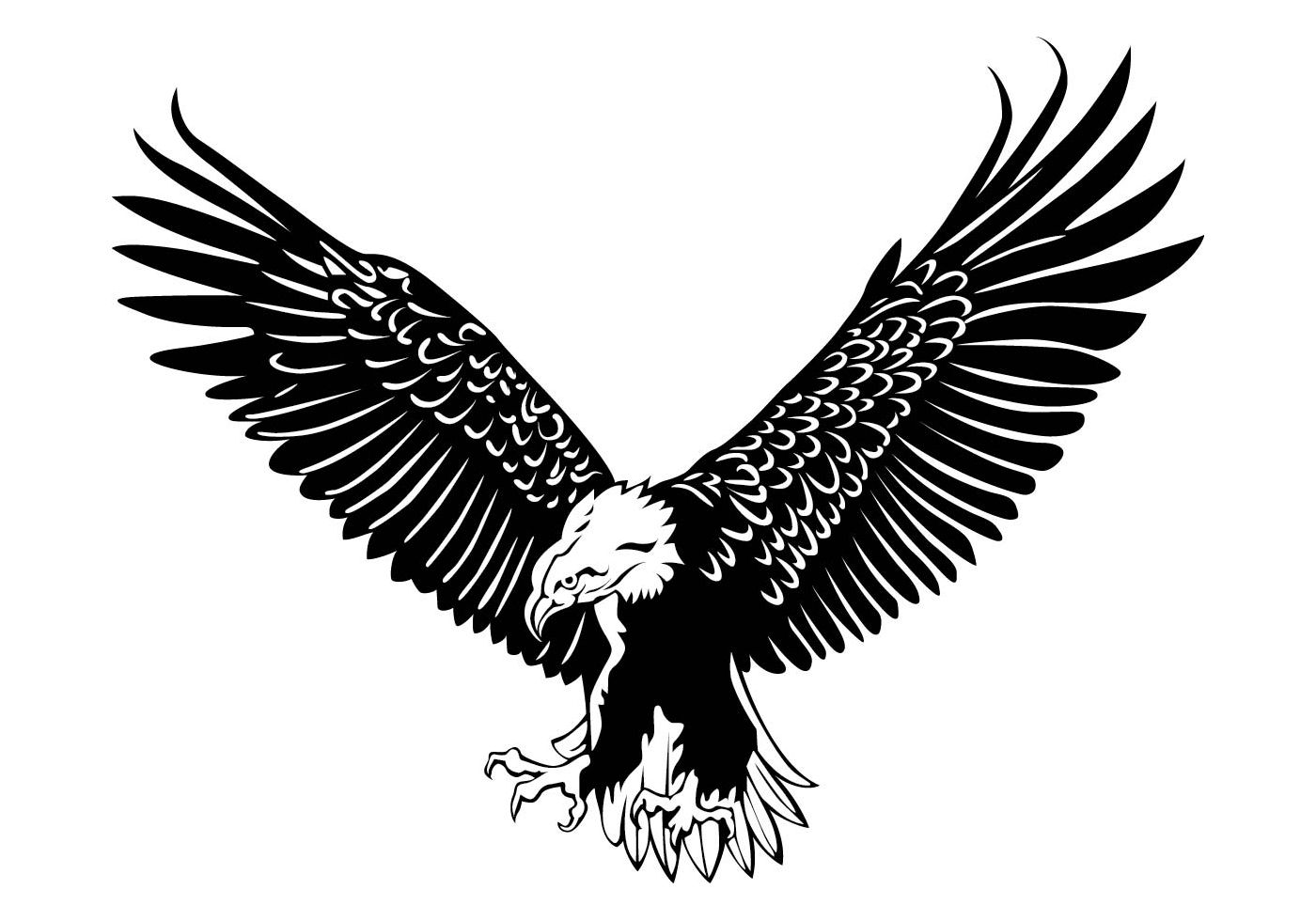2975 Best Eagle Flying Free Vector Art Downloads from the
