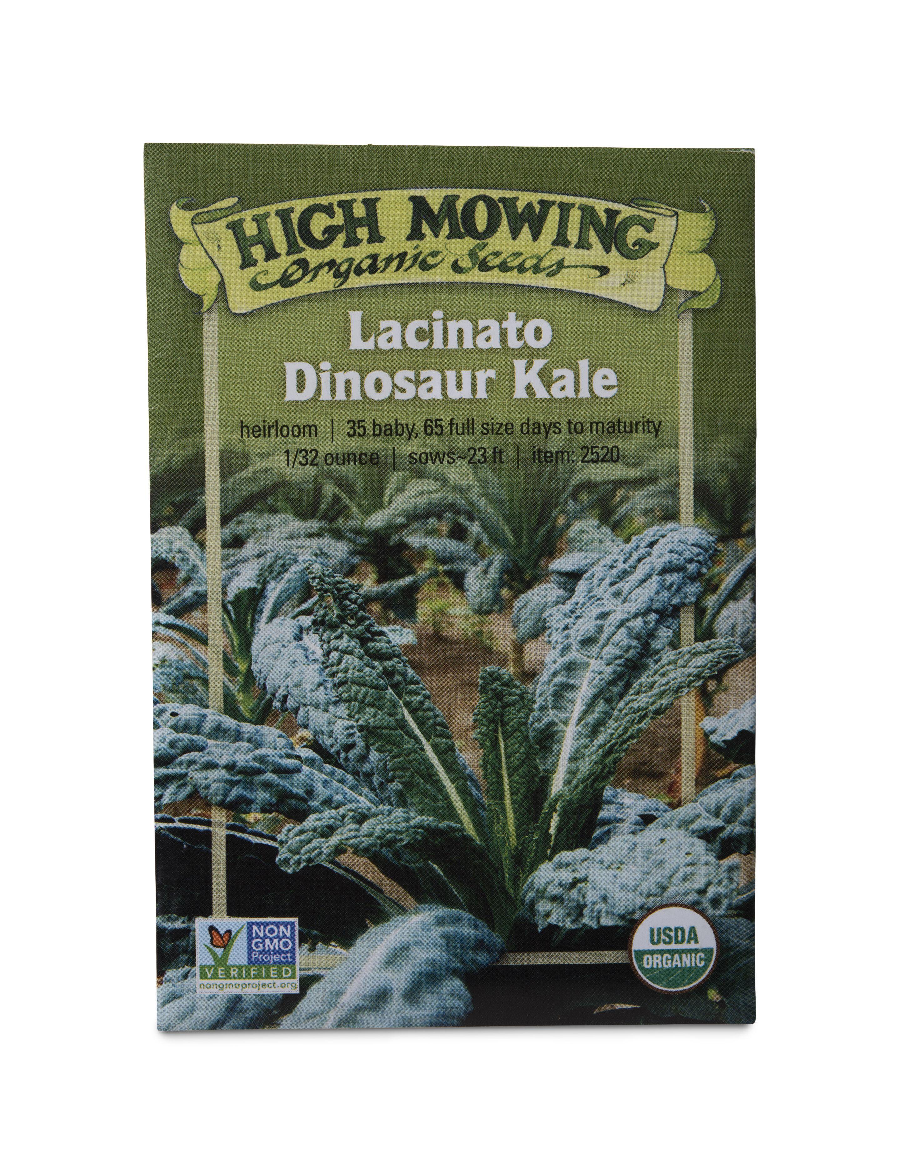 Lacinato Dino Kale Organic Seeds