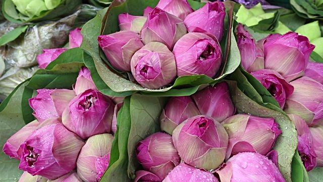 Lotus flower at a local flower market in thailand is used as a flowers lotus flower buddhism mightylinksfo Image collections