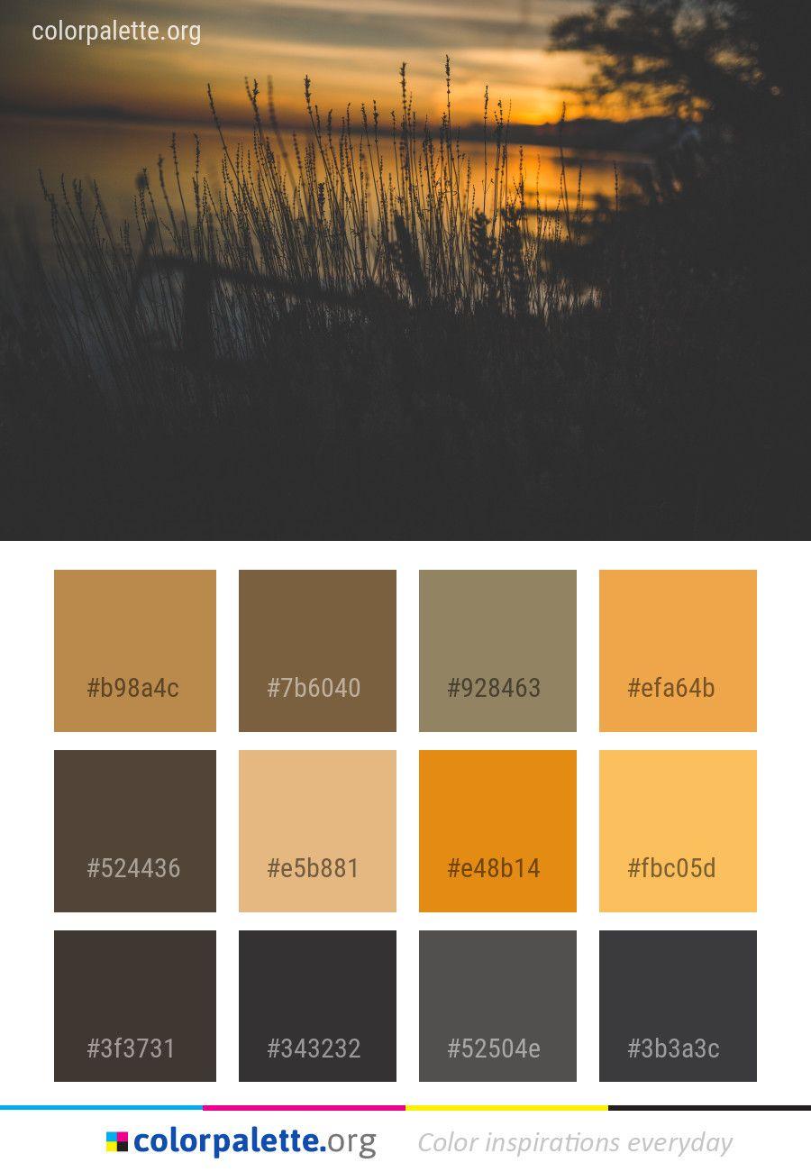 water reflection sky color palette color palettes pinterest rh pinterest com