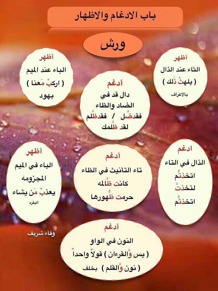 باب الادغام والاظهار لورش Quran Arabic Tajweed Quran Islam Facts