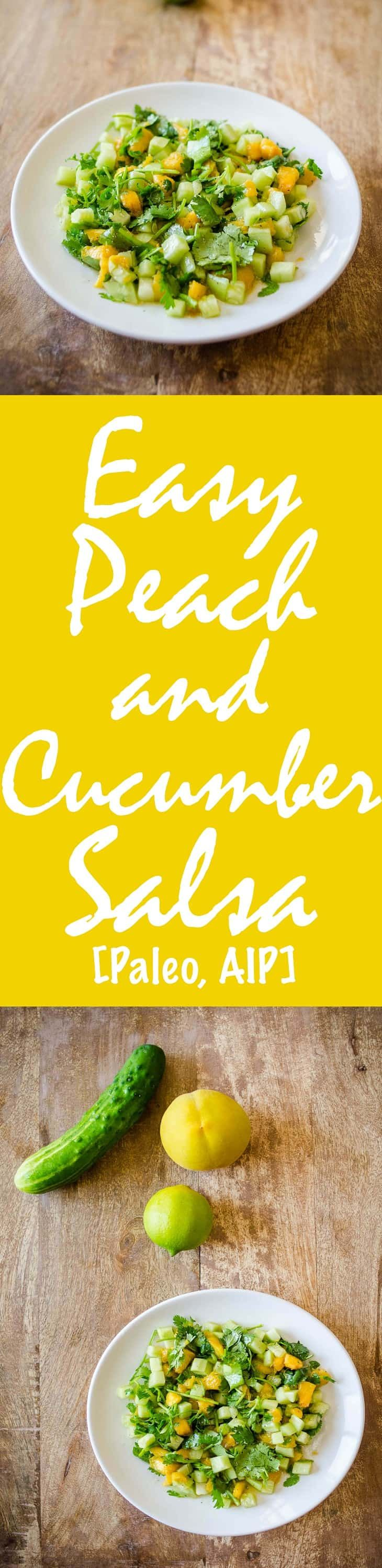 Easy Peach and Cucumber Salsa Recipe [Paleo, AIP] #paleo #aip #recipes - http://paleomagazine.com/easy-peach-cucumber-salsa-recipe
