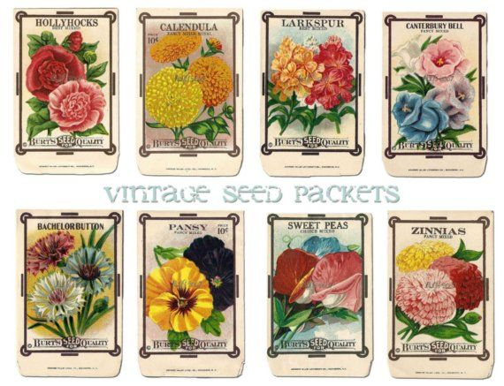 Vintage Flower Seed Packet Collage Sheet by alicewcollection