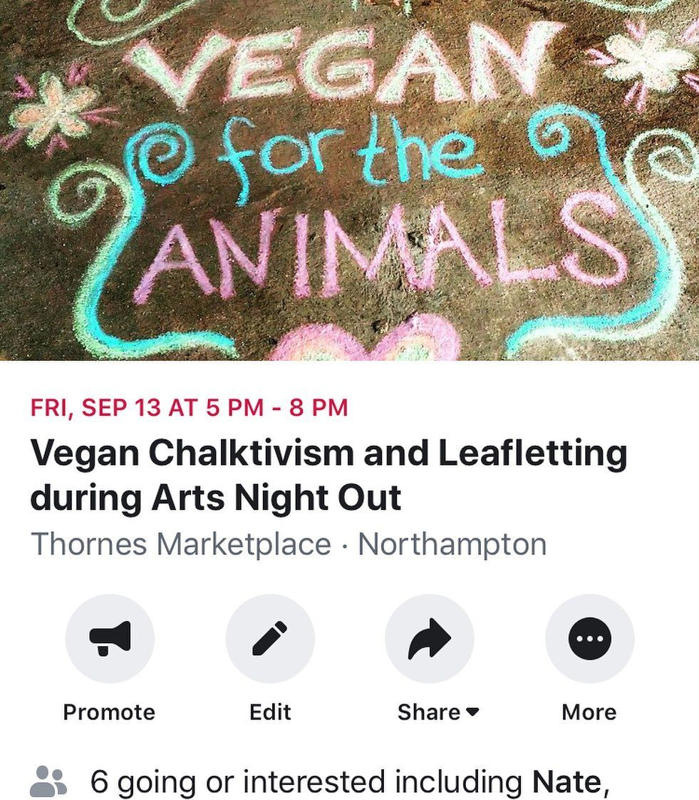New event hosted by @westernmasave this Friday night in Come out to have a good time and and chalk with us for the animals!