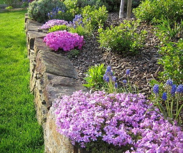Trockenmauer Fotos Tipps Und Erfahrungen Erwunscht Seite 1 Gartengestaltung Mein Schoner Garten Online Garten Trockenmauer Gartengestaltung