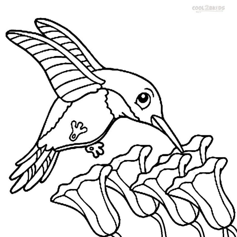Printable Hummingbird Coloring Pages 58425 | coloring pages ...