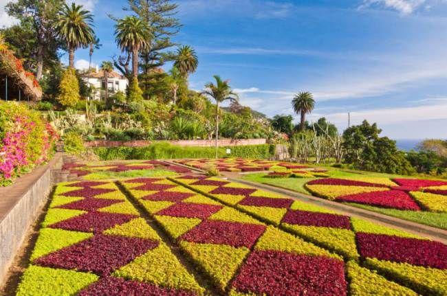f1adcb7b9ce3735e37597054a9221a61 - Hotel Ocean Gardens Portugal Madeira Funchal
