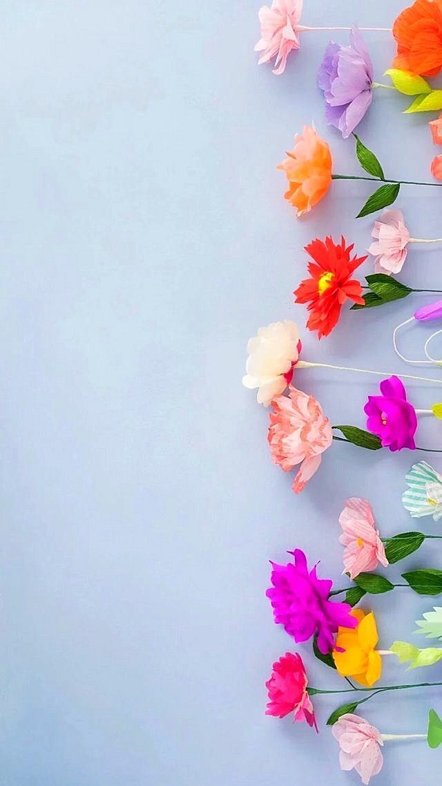 Colorful Blooms Flower Background Iphone Flower Iphone Wallpaper Flower Phone Wallpaper Spring wallpaper for iphone