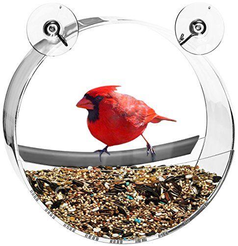 Pin On Bird Feeder