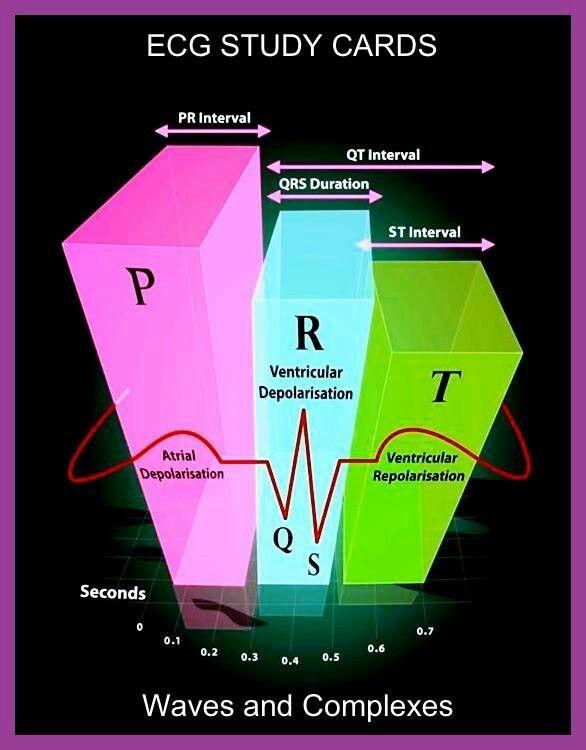 The ultimate ECG book & course: learn ECG interpretation ...