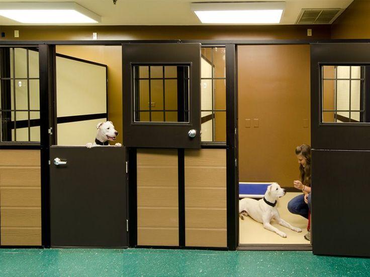 Mason Company S Luxury Walk In Dog Suites Dog Boarding Facility Dog Boarding Kennels Dog Boarding