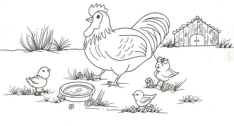 risco pintura em tecido galinha pintinhos fazenda 3 jpg