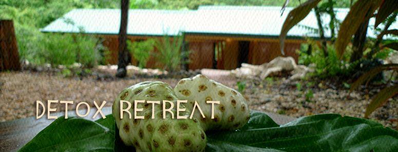 colon detox retreat