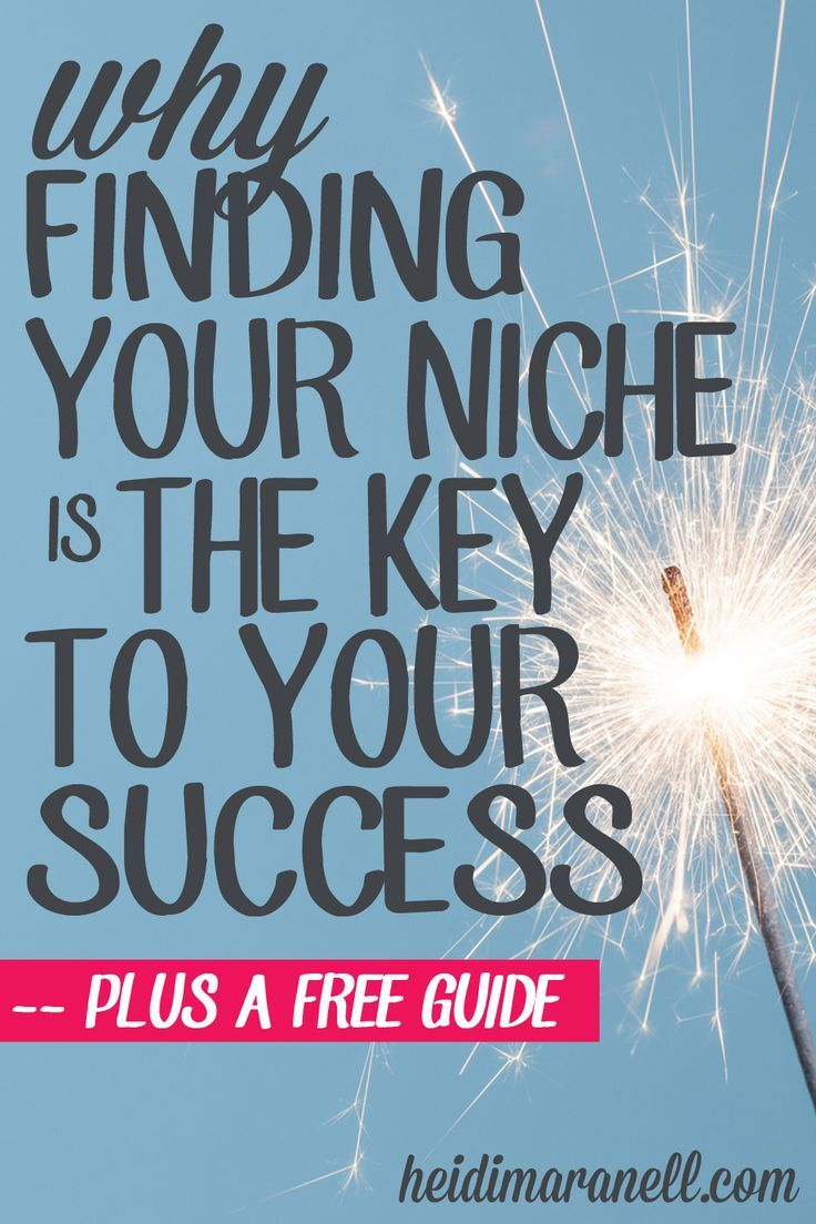 Why Finding Your Niche is the Key to Your Success ( + a ...