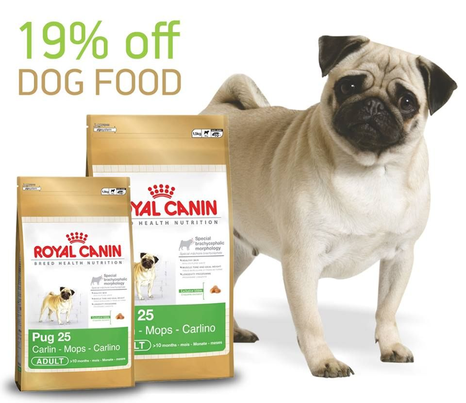 Get 19 Off On Royal Canin Pug 25 Adult Food At Pepperfry With